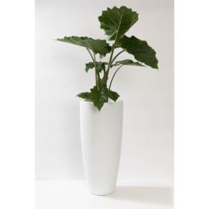 hoge pot mat wit kunstplant