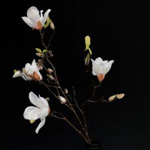 Magnolia tak kunst
