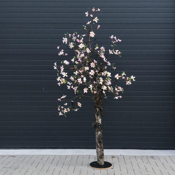 Magnolia Kunstboom
