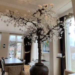 bloesemboom in woonkamer