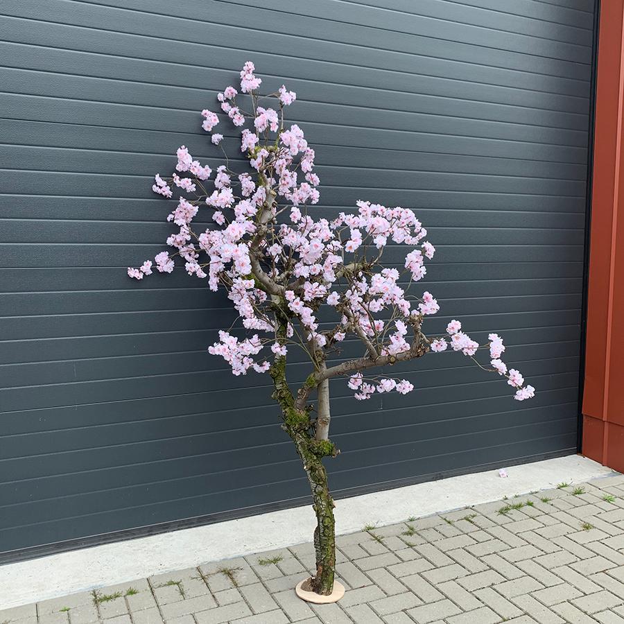 Goede Roze kersen bloesemboom   Kunst bloesembomen CK-76